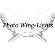Photo Wing-Lights