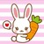 Small_img_4462