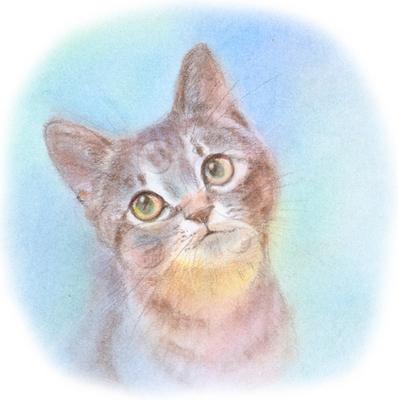 子猫1 リアルのイラスト かわいいのイラスト ほのぼののイラスト