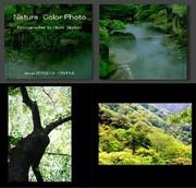 写真集「Nature Color Photo」 白鳥保美
