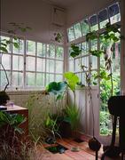 indoorgreenstyle