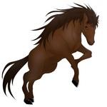 馬の絵です