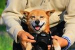 いつもはモデル犬の愛犬がカメラマンに挑戦しました