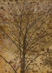 日本画風の木イラストです。