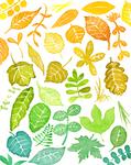 透明水彩で制作した、カラフルな葉っぱ柄のイラストです。