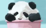 パンダのイラストです