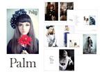 ファッション情報誌「Palm」タイトルロゴ・本1冊全体のブックデザイン・グラフィック