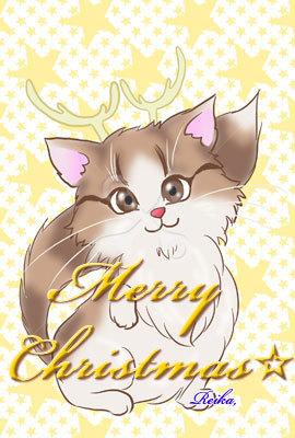 クリスマス☆ニャンコ