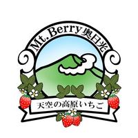 ホームページ・名刺等に使用するロゴデザイン(カラーバージョン)の納品作品