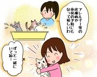 ネットショップで販売している商品の使用方法説明の3コマ漫画(ペット用入浴剤)